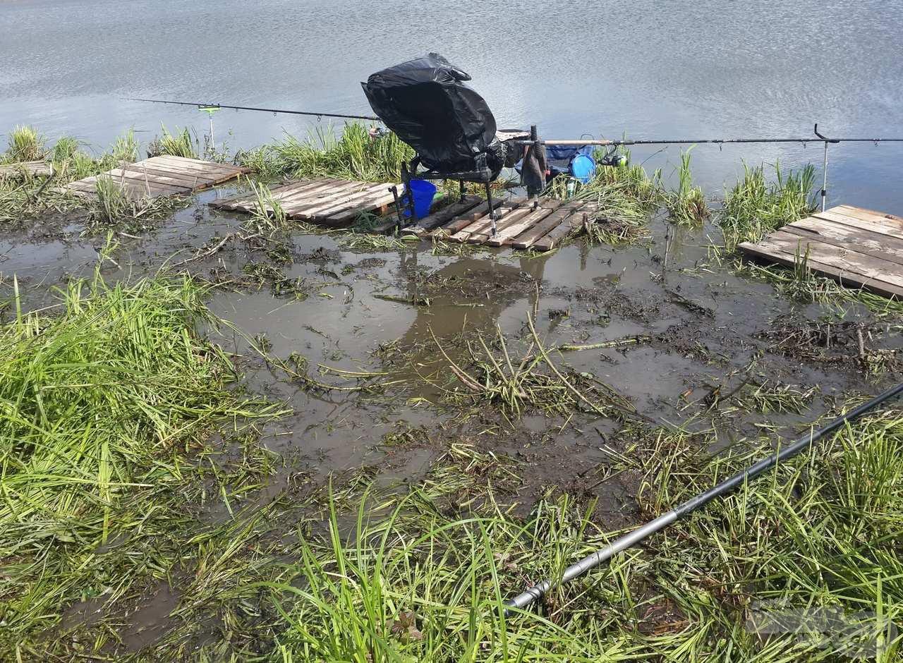 Nem volt túl kellemes a horgászhelyünk, de a gyönyörű halak kárpótoltak mindenért!