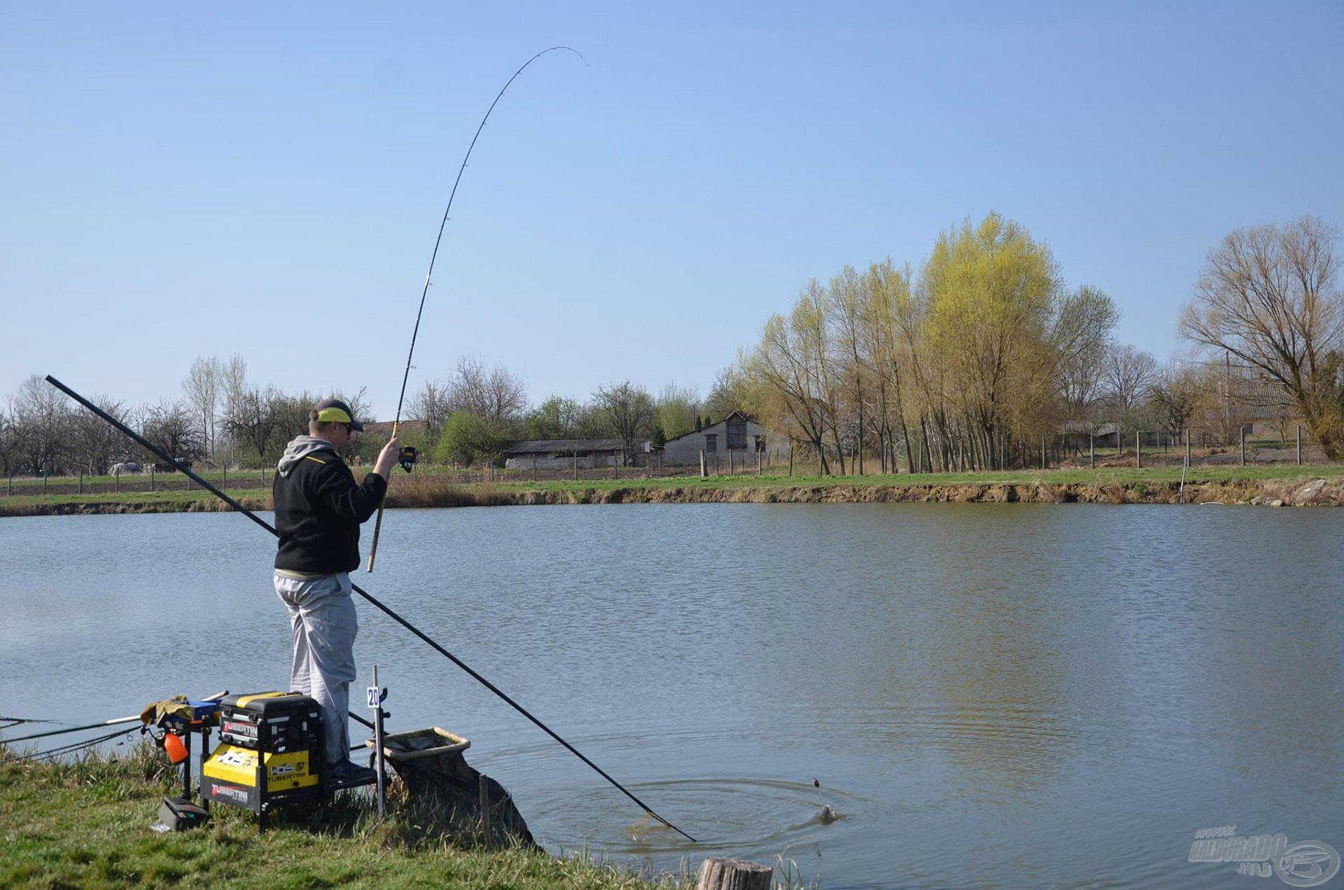 A Tóth-tó egy intenzív telepítésű víz, így jó eséllyel nyáron is sok hal fog ideiglenesen a hálók rabságába kerülni