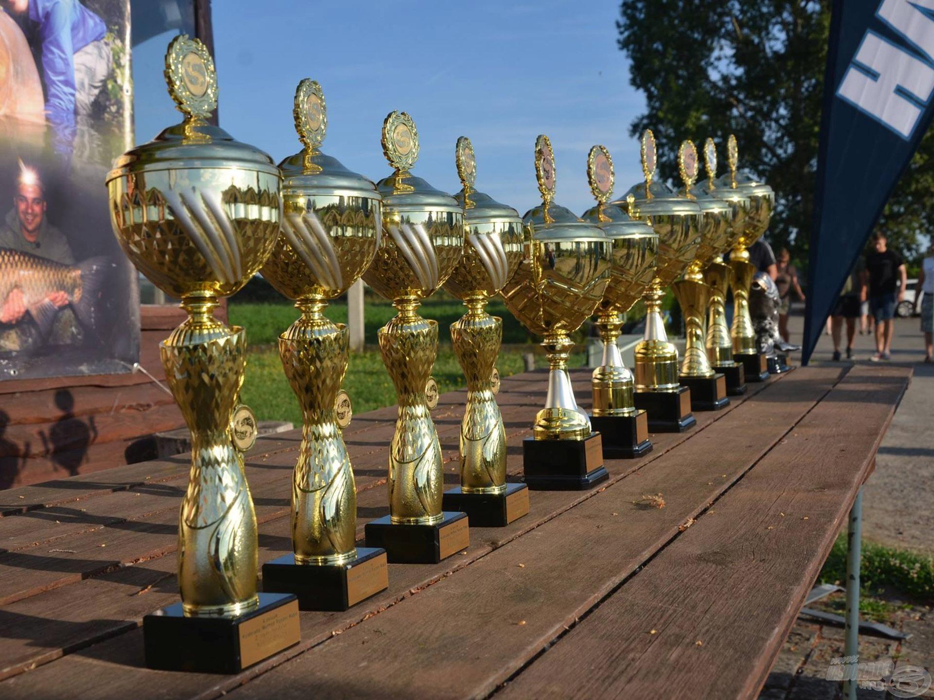 A teljes versenysorozat, illetve az egyedi versenyek is külön-külön lesznek díjazva!
