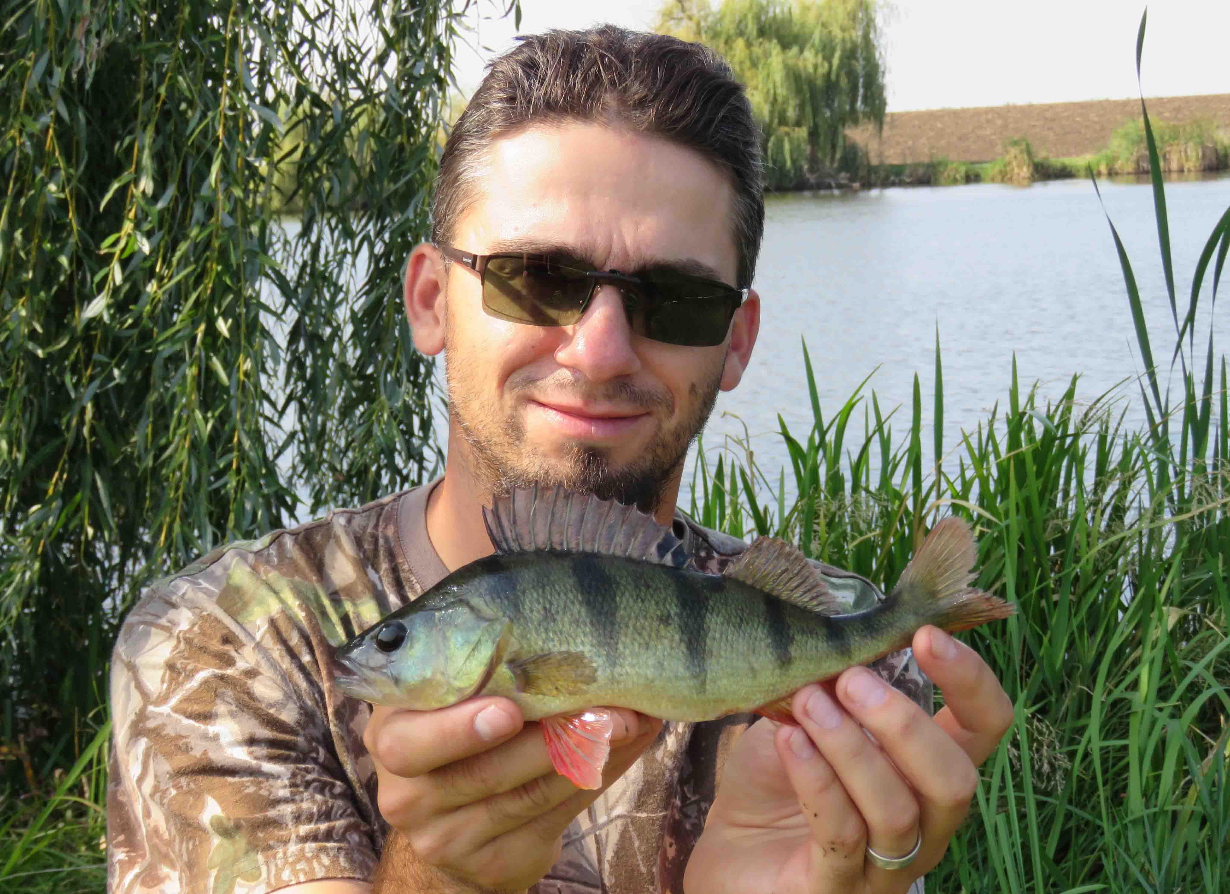 Szép csapósügérek is élnek a tóban