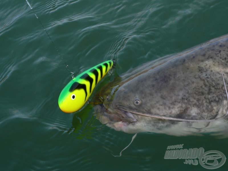 A vertikális horgászat egyik lehetősége a sokból