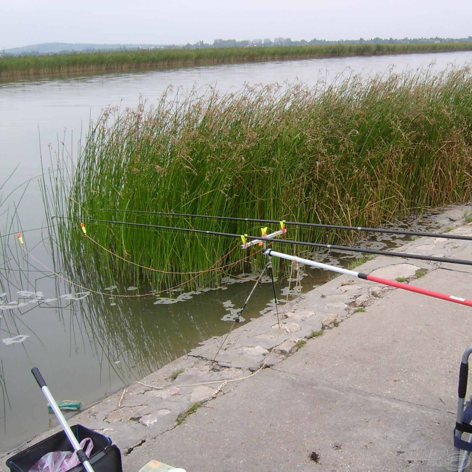 Állóvízi horgászat