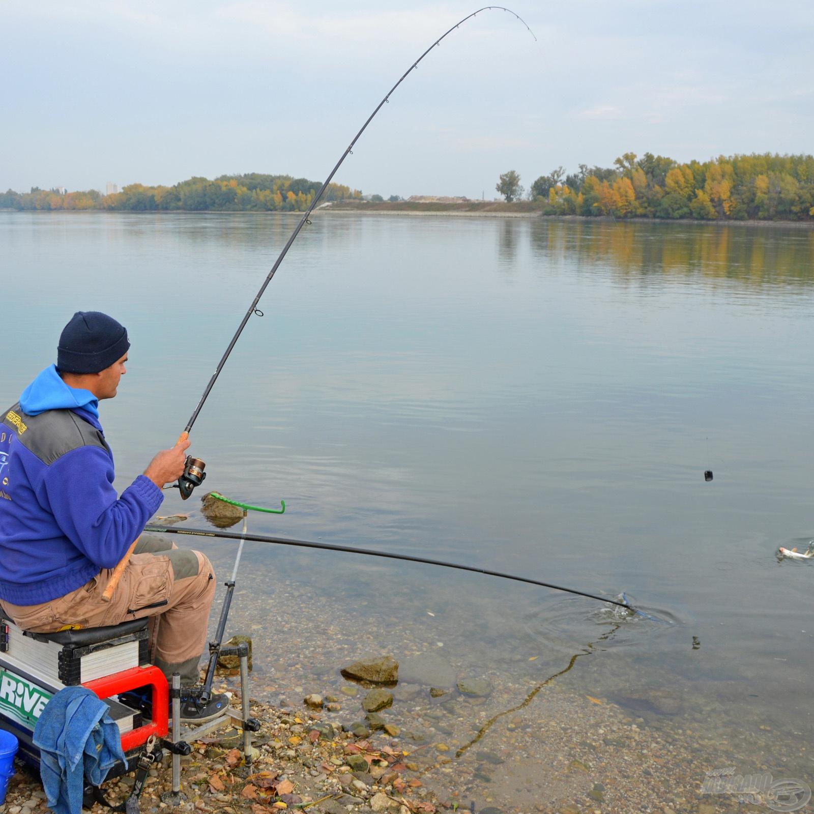 Békéshal horgászat