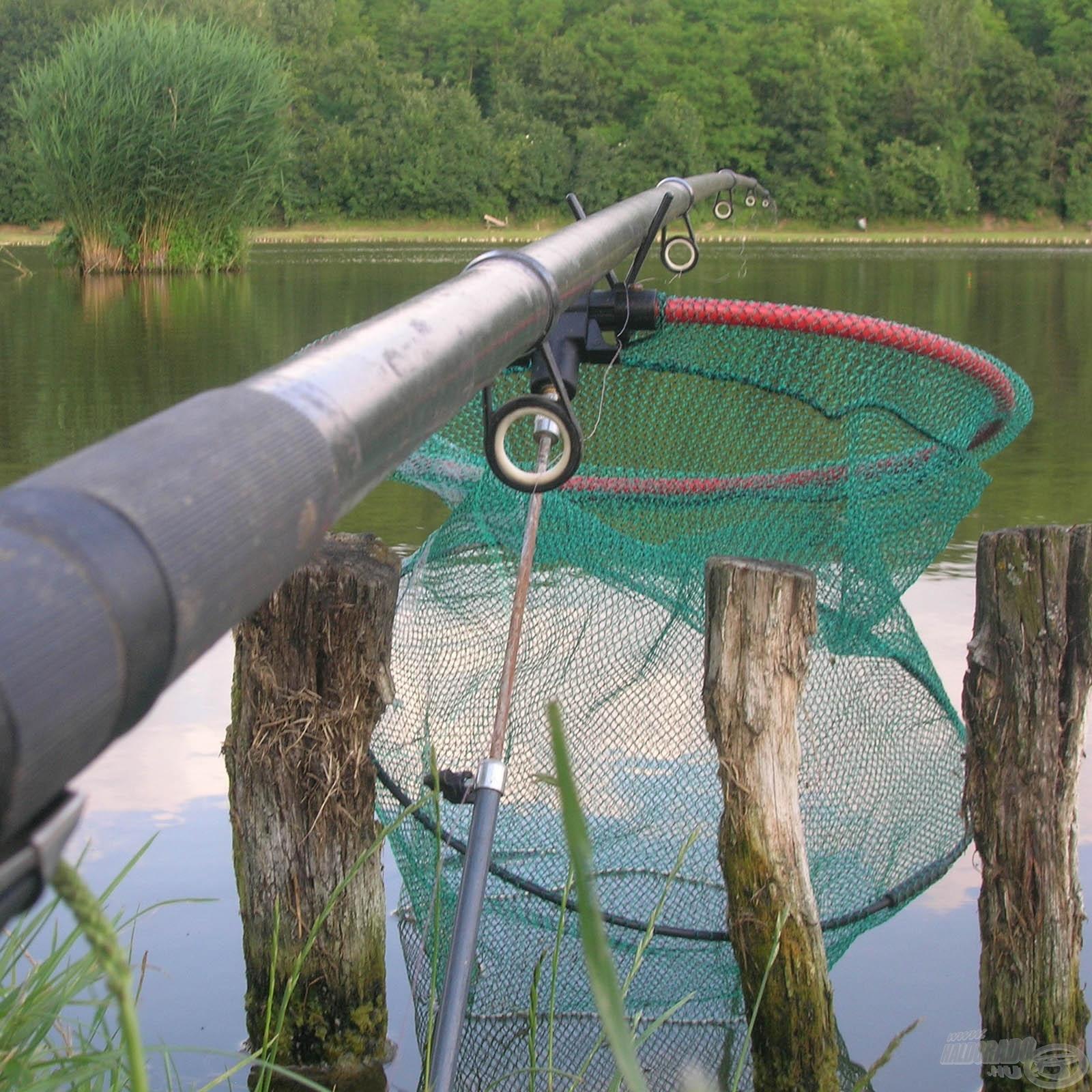 Bolognai botos horgászat
