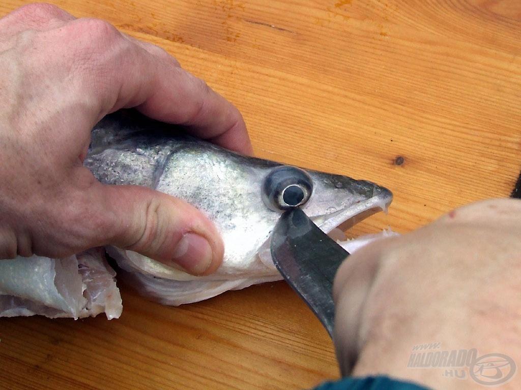 A hal szemét is könnyedén kivehetjük egy jó késsel