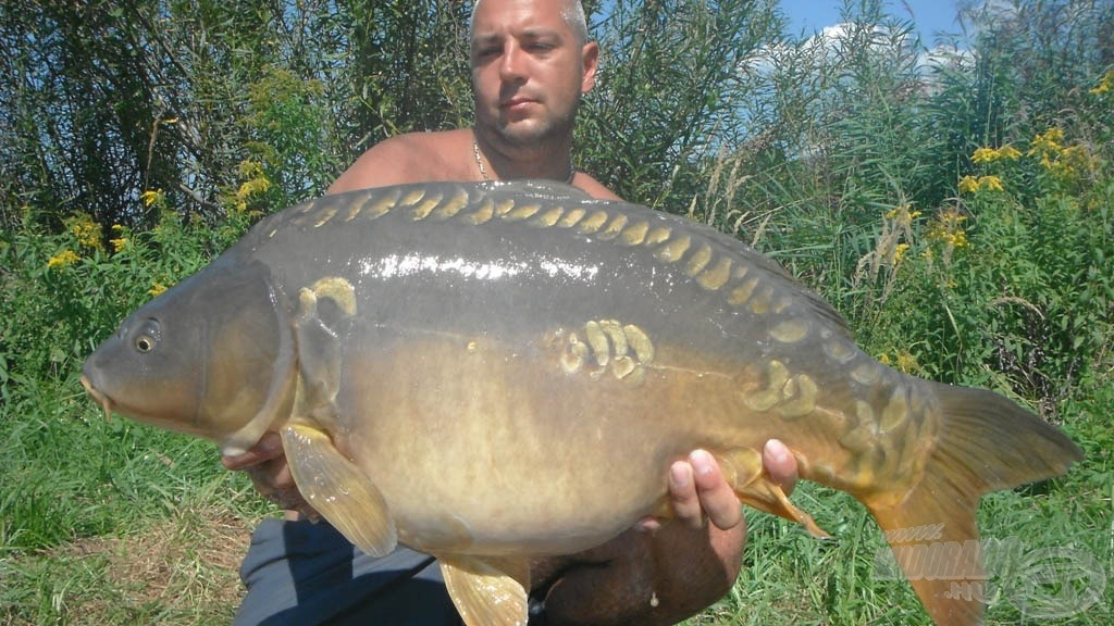 12, 80 kg-os tükrös