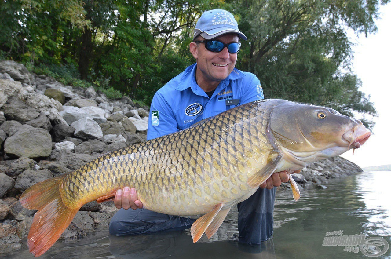 A kitartó horgász jutalma olykor akár álmai hala is lehet…