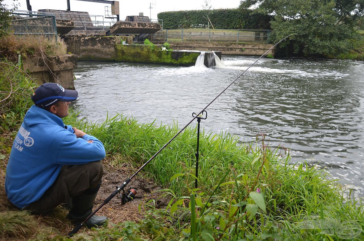 A TEAM FEEDER Master River 390XXH egy nem hétköznapi paraméterekkel rendelkező extra erős feederbot, mely maximálisan helyt áll a legvadabb folyóvizek horgászata során is!
