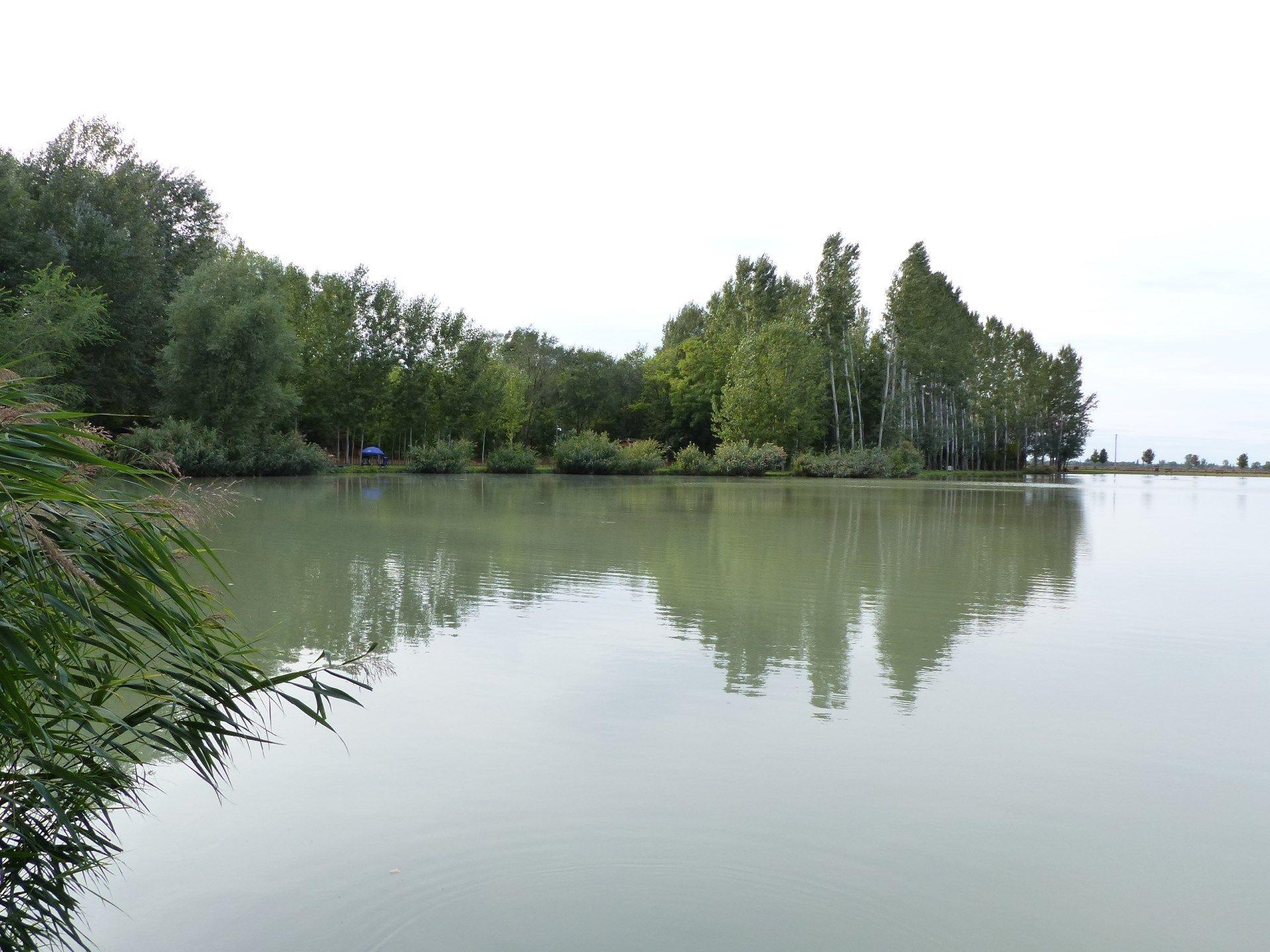 Horgászatom helyszíne az Izsáki Horgász- és Pihenőpark Nagy-tava volt