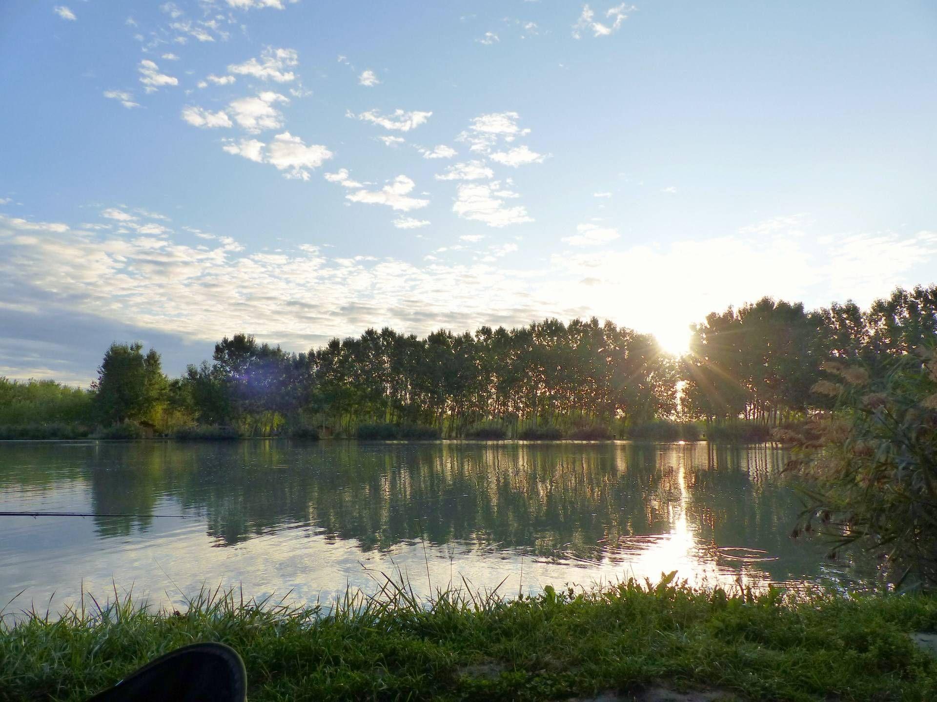 Szerettem volna minden pillanatot kihasználni, ezért már kora reggel a tópartra érkeztem és beélesített felszereléssel vártam a pontyokat