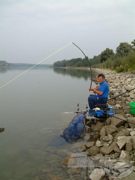 A Drennan Carp Bungee csőgumival megsokszorozódik egy termetes hal kifogásának esélye