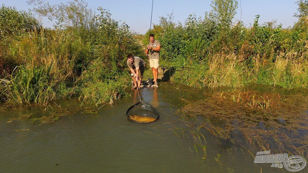 Az új csalik tesztelése során számos természetes vízterület, köztük a Szivárgó-csatorna is célba került…