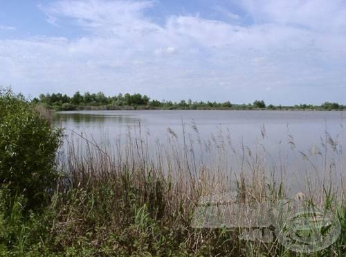 A tó délnyugati sarka a közelebbi parkoló felett