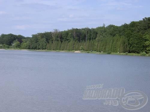 A szemet gyönyörködtető örökzöld sor előtti vízterület a déli part jó horgászhelye is egyben
