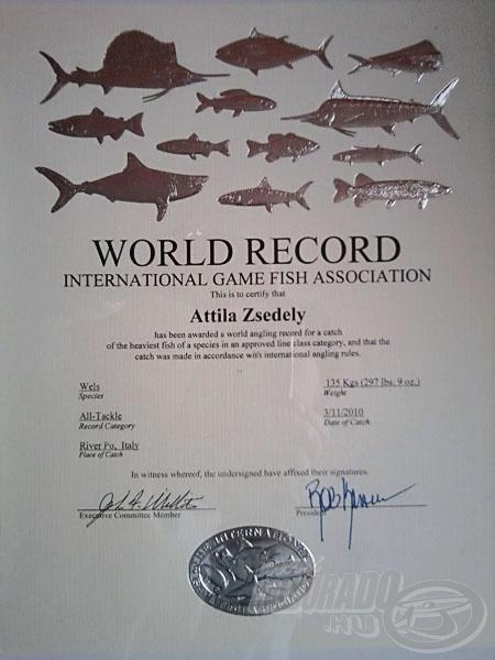 Íme, az oklevél az abszolút világrekord harcsáról