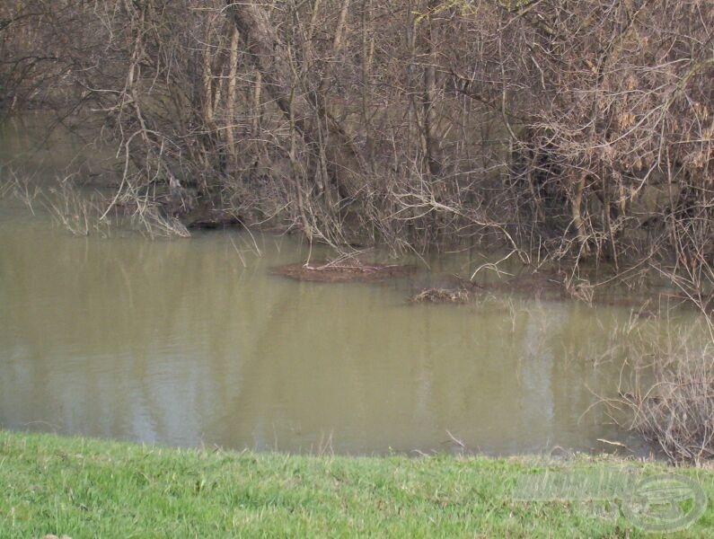 Hosszabb ideje tartó áradások esetén kiszalad a hal a töltésoldalba is