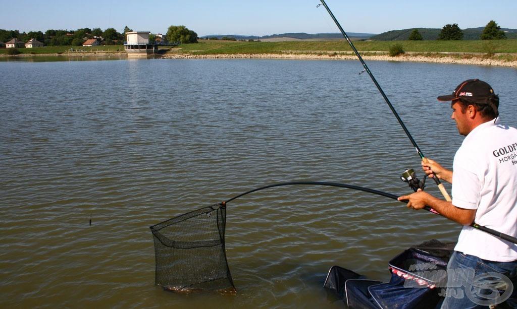 A gáti oldalon mindhárom szektorban akad egy horgász, aki kiemelkedően jó ütemben fogta a halakat. A bal szélsőben Németh Balázs jeleskedett…