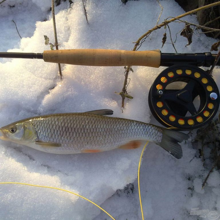 Legyező horgászat