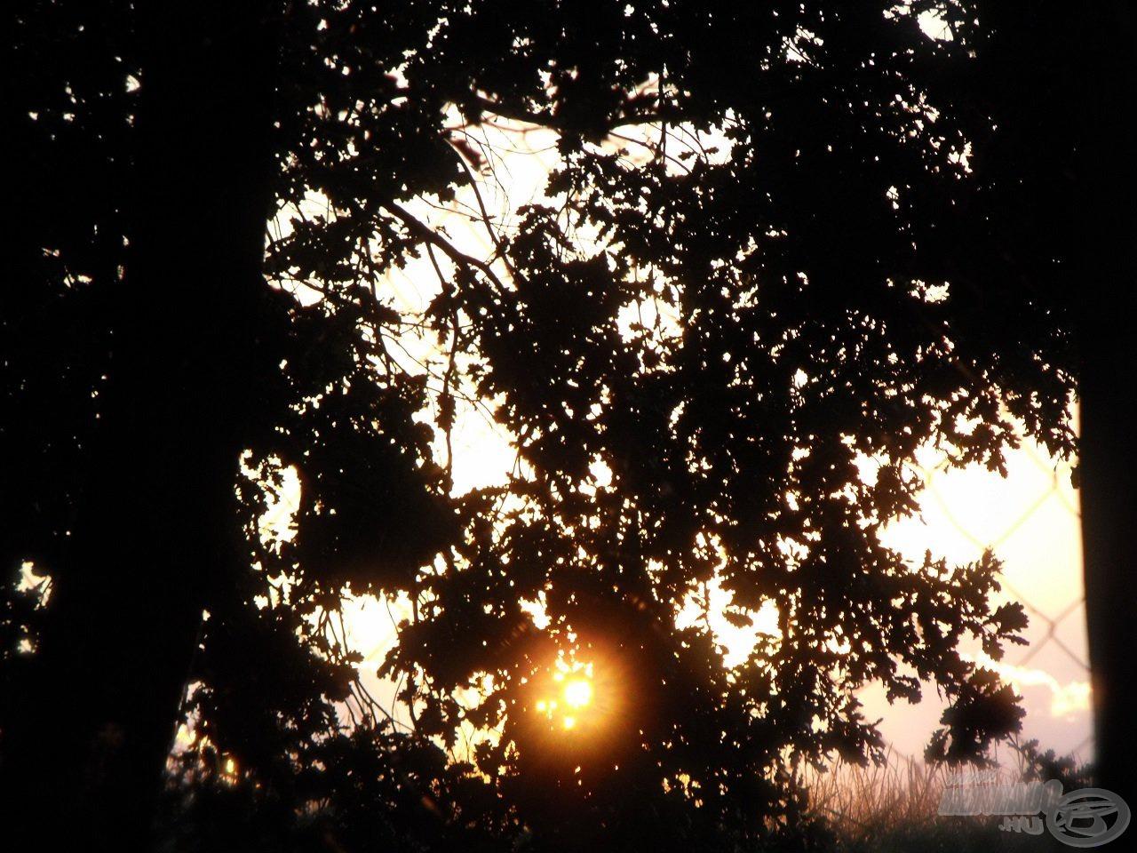 A felkelő nap sugarai már derengenek a fák levelei közt, ideje búcsút venni