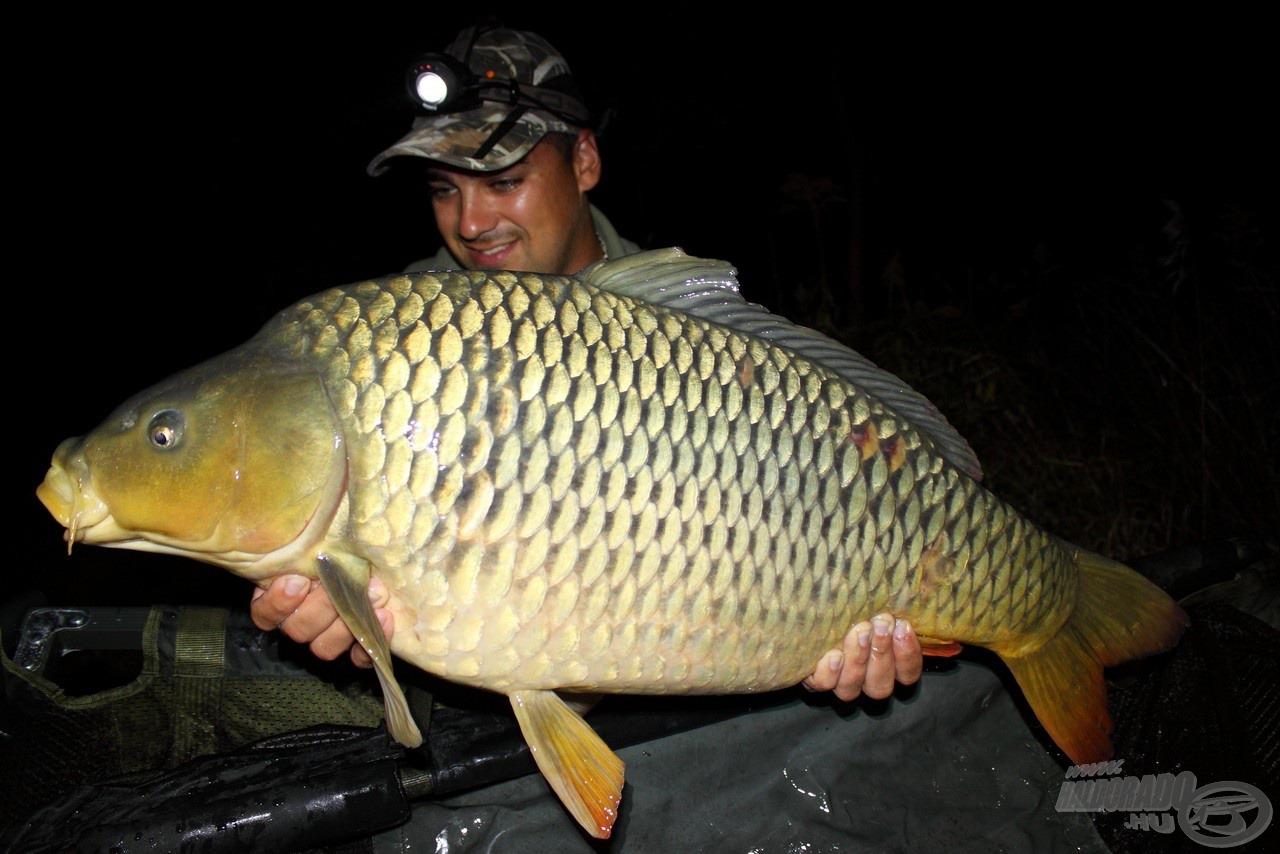 Első 10 kg feletti ponty, ismét éjszaka. A nagyobb és óvatosabb halak csak ekkor foghatók, így mindenképpen érdemes az esti órákban is próbálkozni!