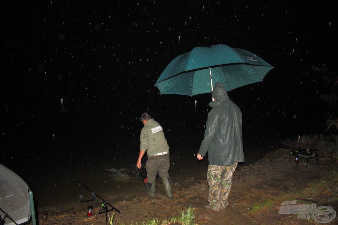 Az eső megtörte az éjszakai csendéletet, és a pontyok is táplálkozni kezdtek