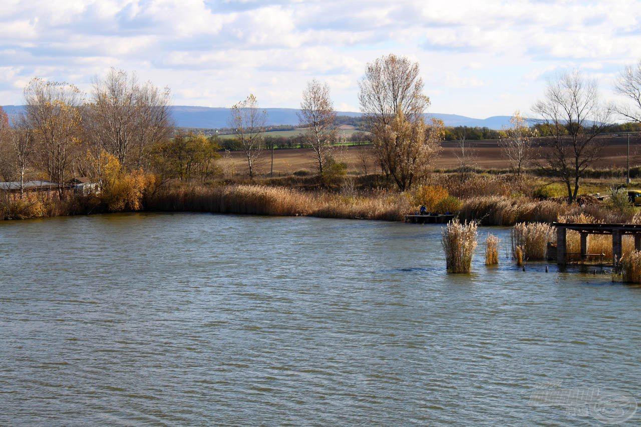 A Király Ponty Horgásztó megfelelő helyszínnek tűnt a szelektív, nagyhalas feederezés bemutatásához