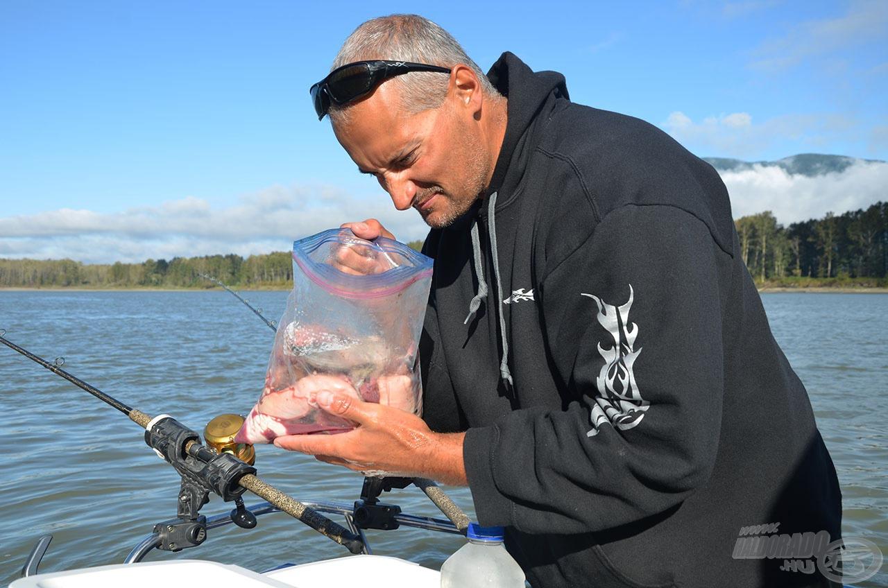 A tokhal a folyó(k) tisztasági őre. Minden, ami elpusztul, amely sérült és gyenge, az a tokhal gyomrában végzi, így a legfogósabb csalik is (amelyek gyakorta orrfacsarók) ehhez igazodnak