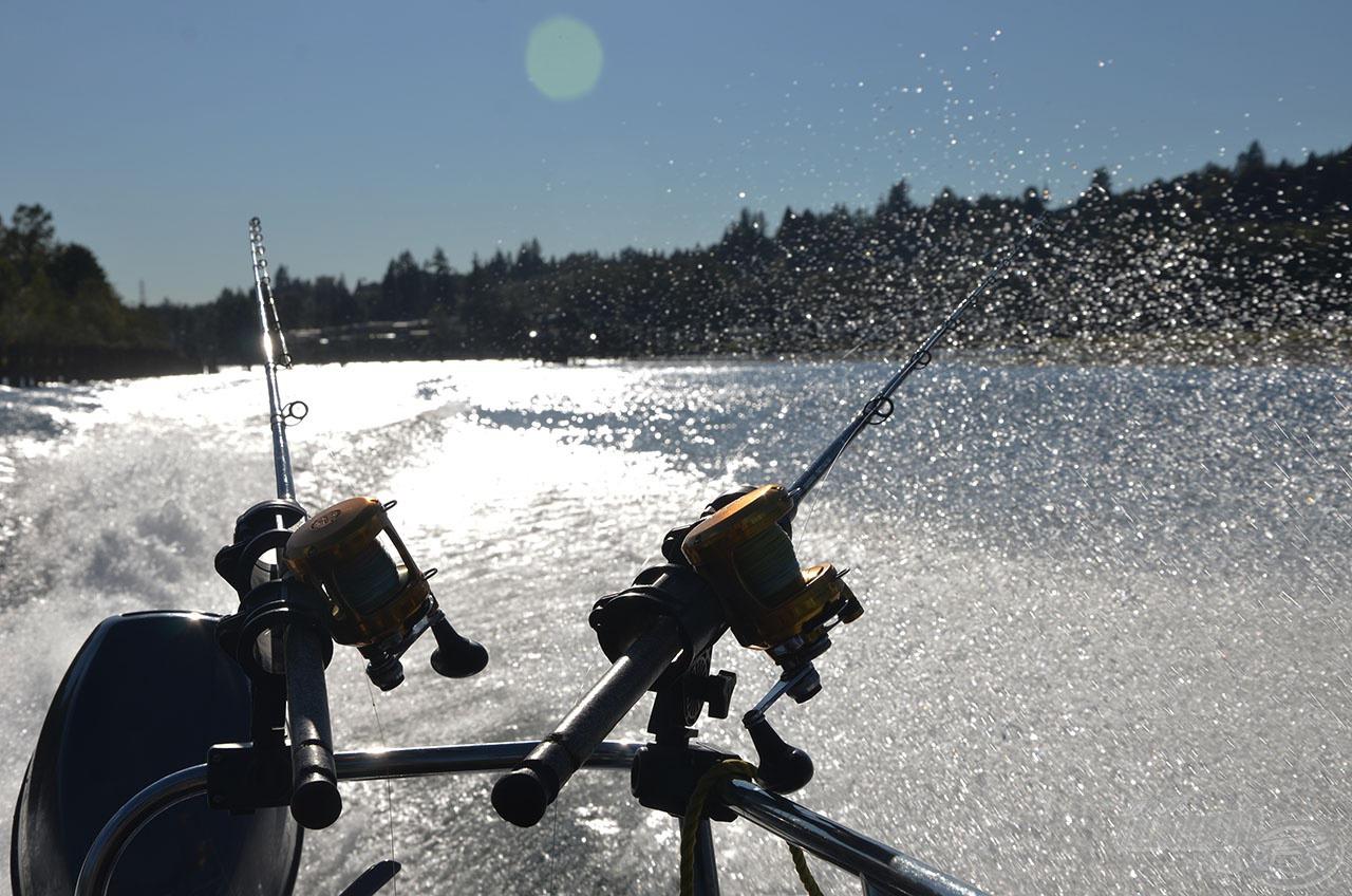 A folyamatos halkeresés a sikeres horgászat egyik titka