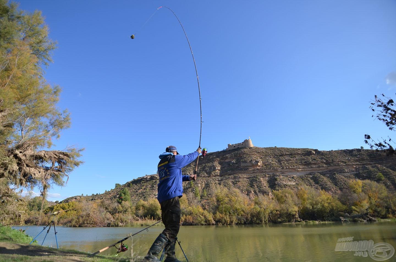 Kereső horgászatot végeztünk, a parttól 60-80 méterre dobáltunk