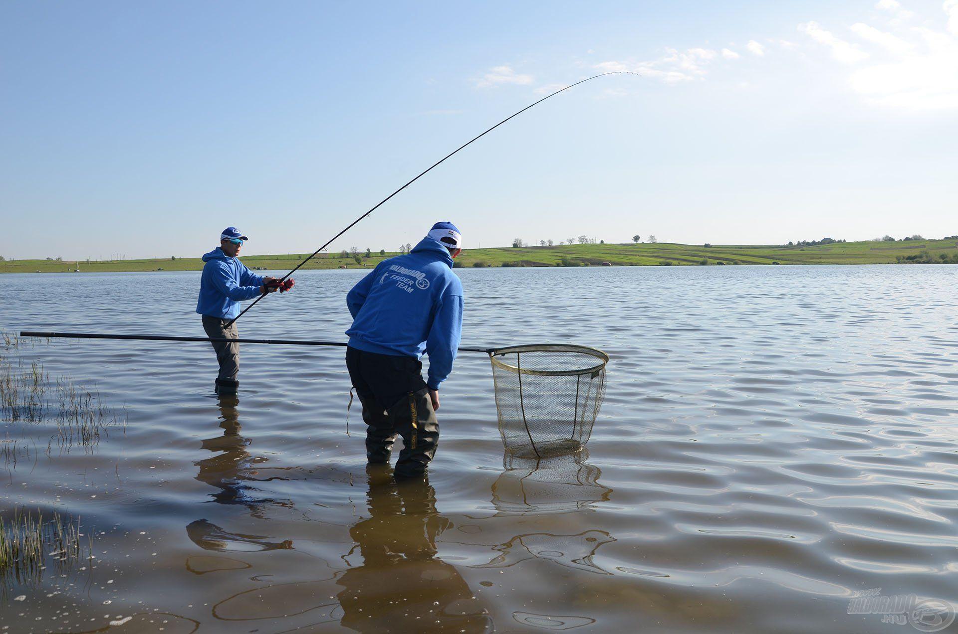 Ennek fele sem tréfa, gyerünk a hal után!