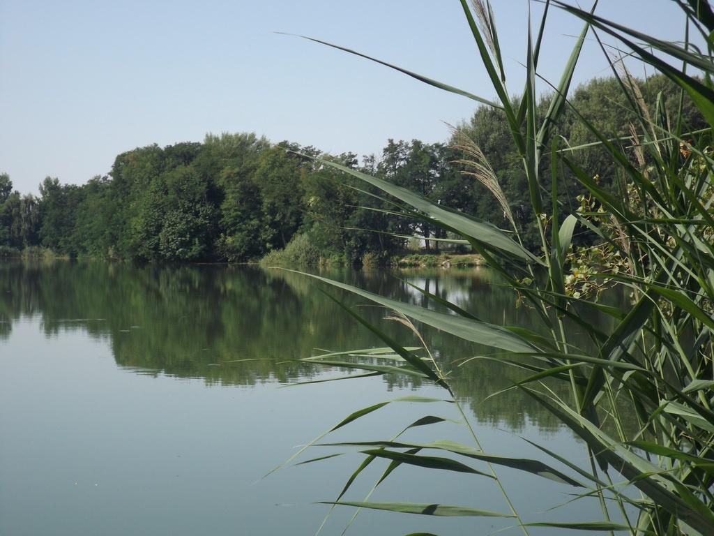 Fás tó és Báger tó