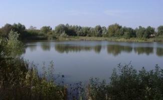 Püspökmolnári-tó