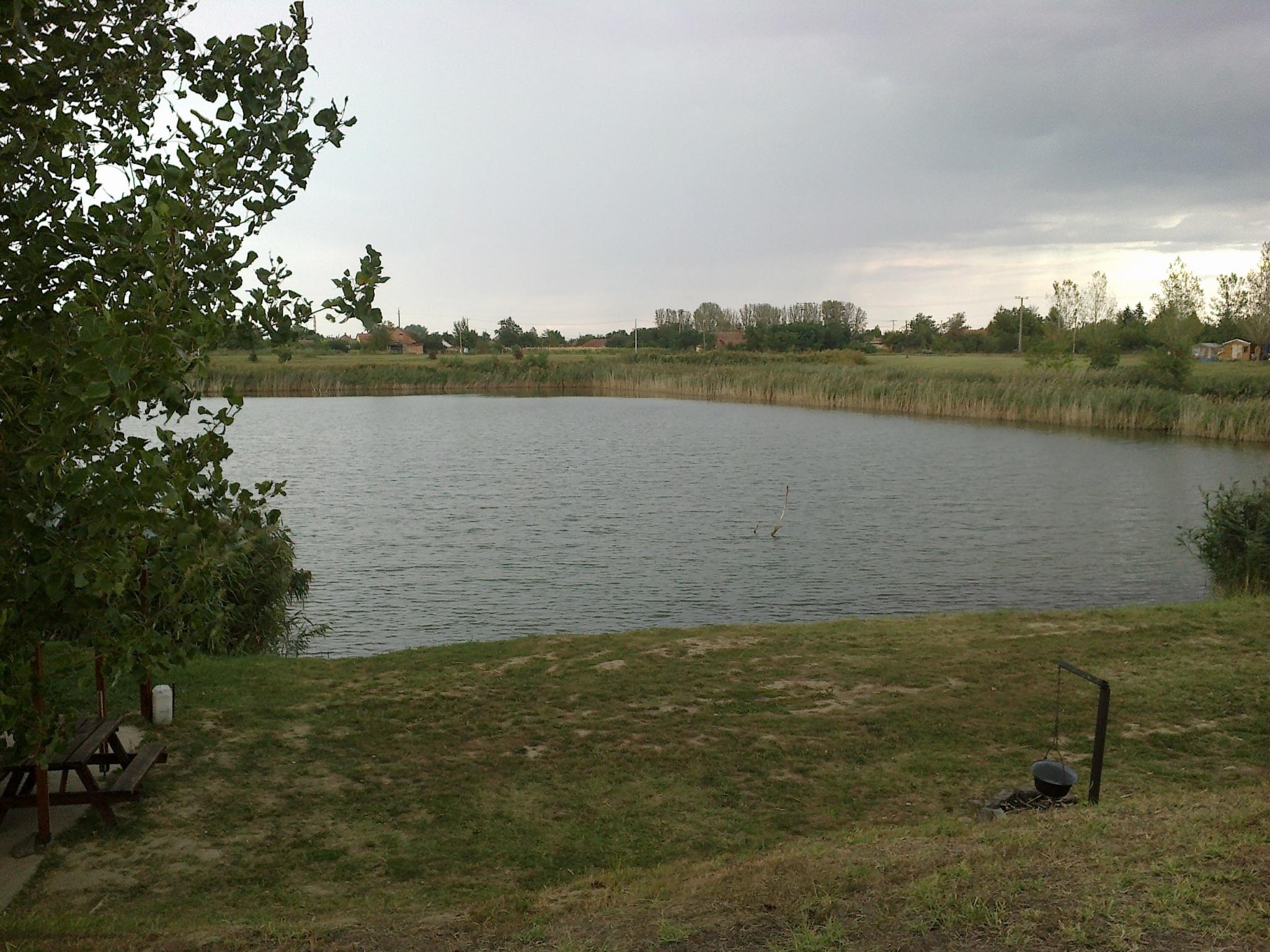Szi-Sza Bt Horgásztanya Mezőberény, Nagyhalas tó